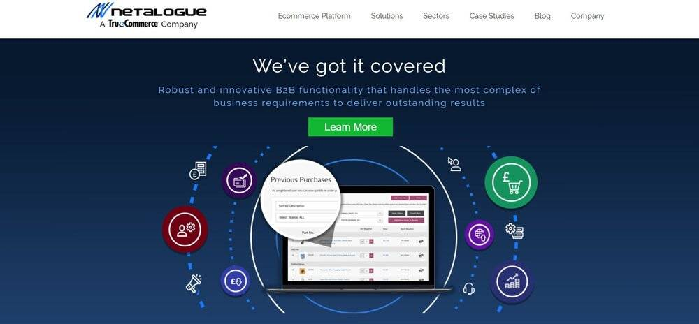 Netalogue has a powerful   B2B eCommerce script.